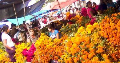 Rechaza Ayto autorizar más puestos en Mercado de Abasto por 'Día de Muertos'