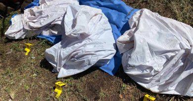 Encuentra Fiscalía 3 cuerpos sin vida en una cueva de San Miguel Coatlán