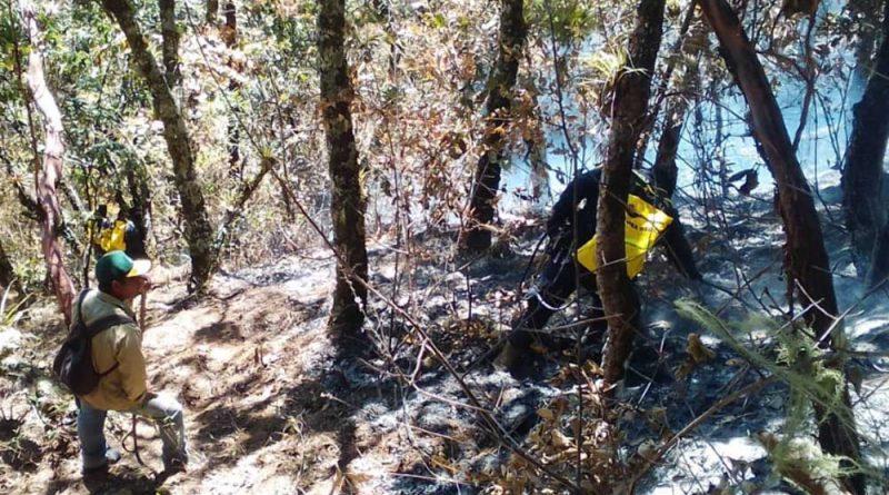 Declaran en emergencia a 28 municipios de Oaxaca, por incendios forestales y heladas