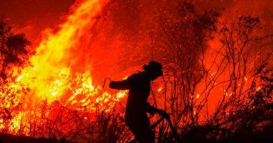 Incendios forestales azotan a miles de hectáreas de bosques o pastizales en México