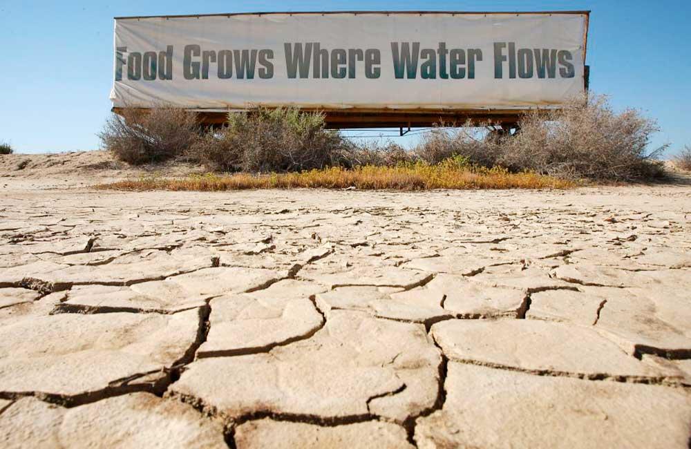 Declara Gobernador de California emergencia por sequía en todo el estado